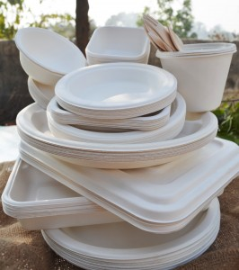 Earthware Products from Visfortec Pvt. Ltd.