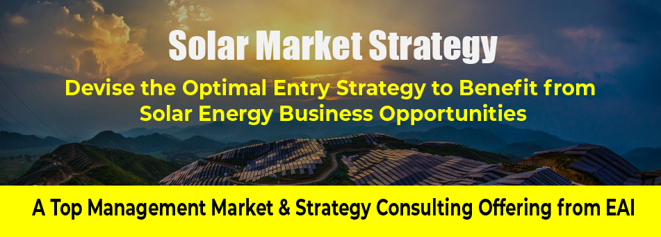 Solar Energy Market Strategy Consulting for Indian Firms
